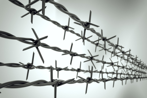 Perspective view of new barbed wire.